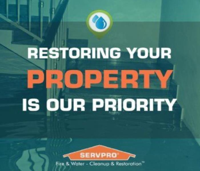 Why SERVPRO Green means clean here at SERVPRO of East Fort Worth