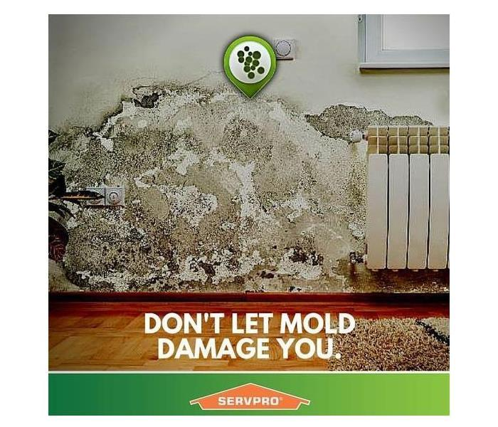 Mold Remediation HOW TO LIMIT MOLD GROWTH IN THE WINTER